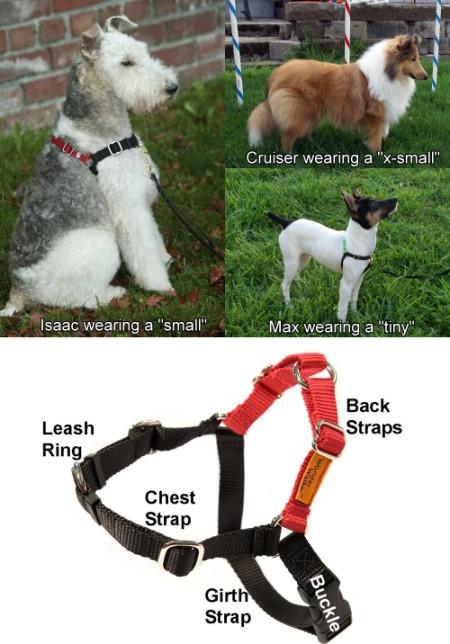 Dog Car Harness >> Wonder Walker™ Body Halter© Sizes And Colors | Wonder ...